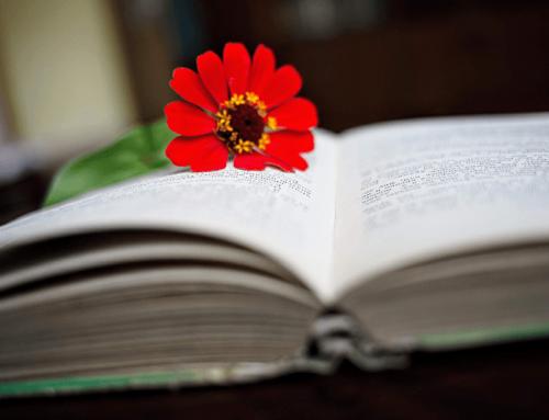 Summer reading list: 10 recomandări literare de citit în vacanță